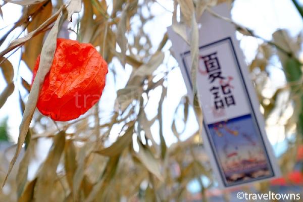 浅草神社のほおずき