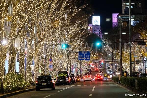 2017年は7年ぶりに表参道全域でイルミネーションを実施!12月25日まで