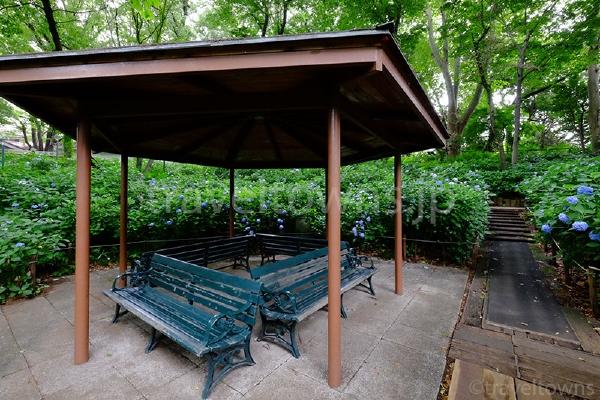 あじさい園の休憩所