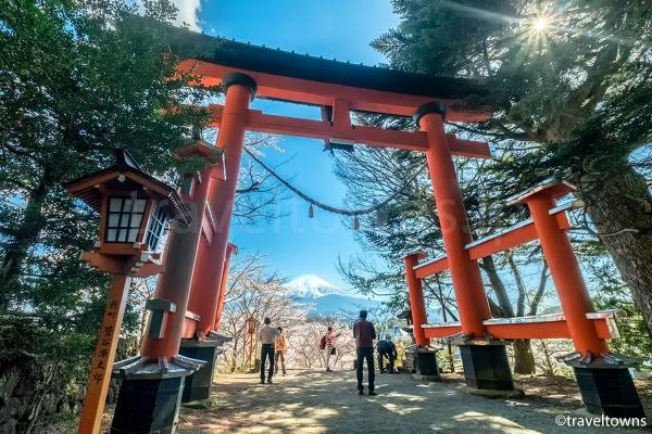 新倉富士浅間神社の桜と富士山