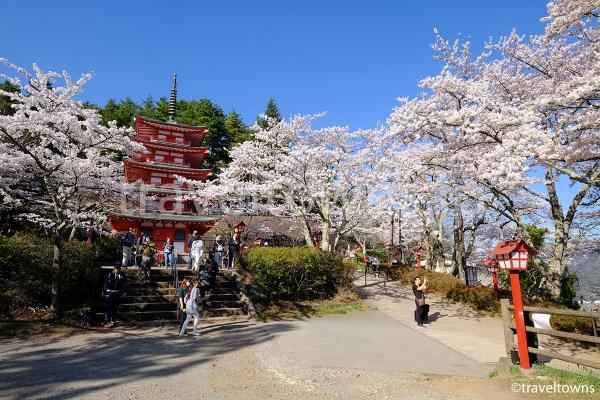 五重塔と満開の桜
