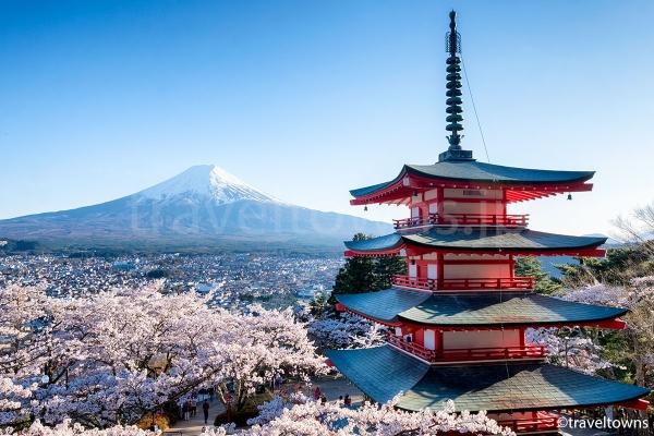 展望デッキから眺める富士山・五重塔・桜