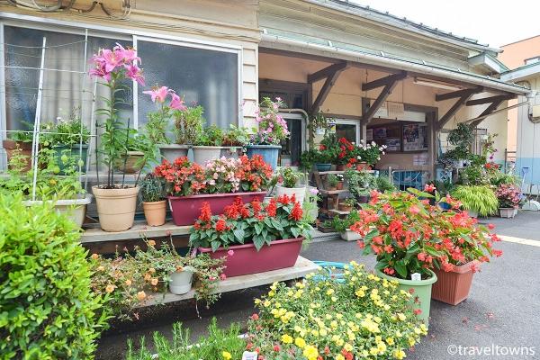 駅ホームに花壇が並んでいる