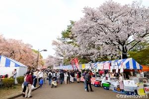 【2020年中止】小金井桜まつり