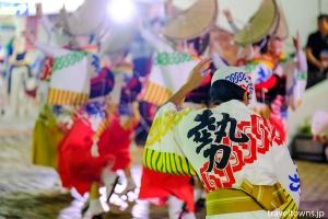 南越谷阿波踊り