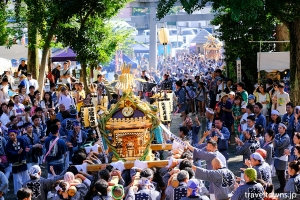 北澤八幡神社 例大祭・秋まつり