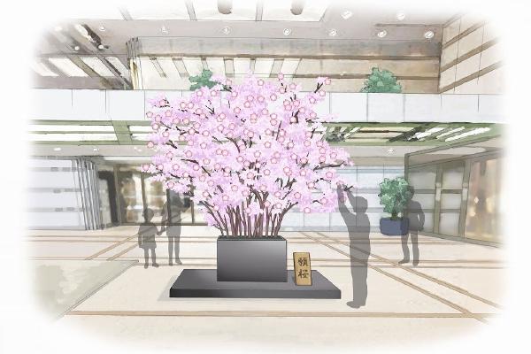 2019年の「みんなで咲かせよう御殿山の桜」