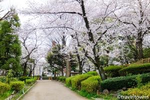 墨田区立隅田公園