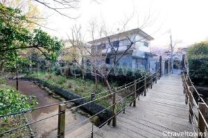 音無さくら緑地・緑の吊り橋