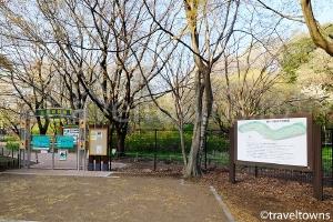 野川公園 自然観察園
