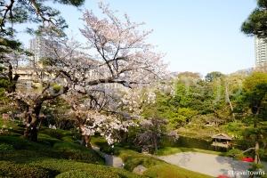 八芳園 日本庭園