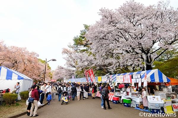 小金井桜まつり開催日は屋台も立ち並ぶ