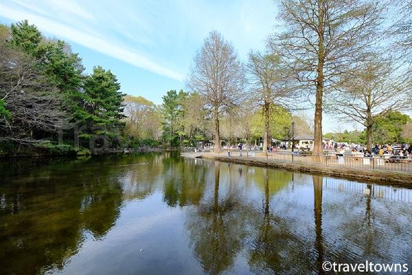 けやき広場北川にある池