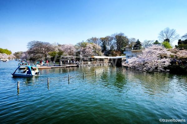 お花見の時期にはとくに混雑するボート乗り場
