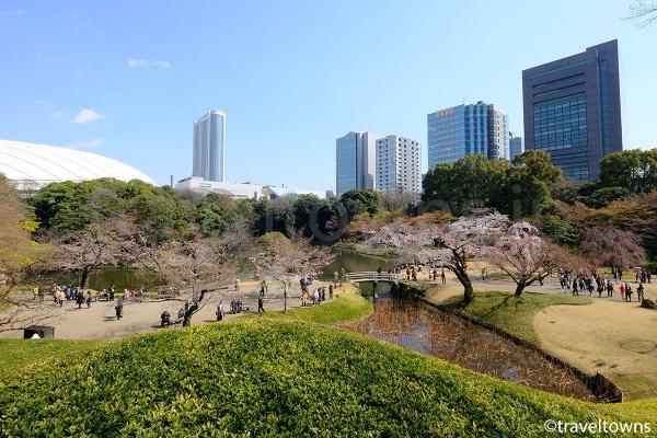 ビルや東京ドームに囲まれている都会のオアシス