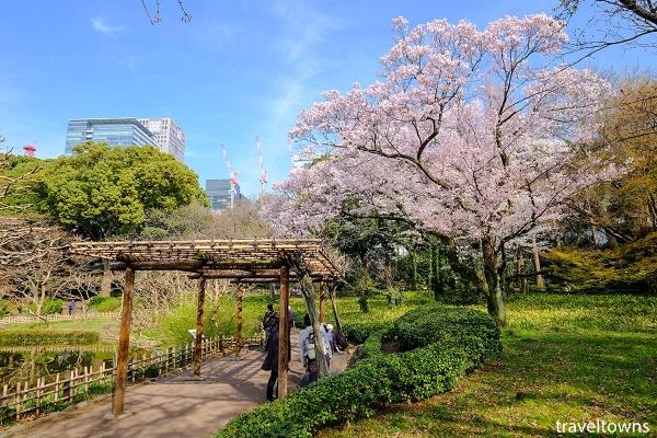 春には二の丸池の周囲でお花見も楽しめる