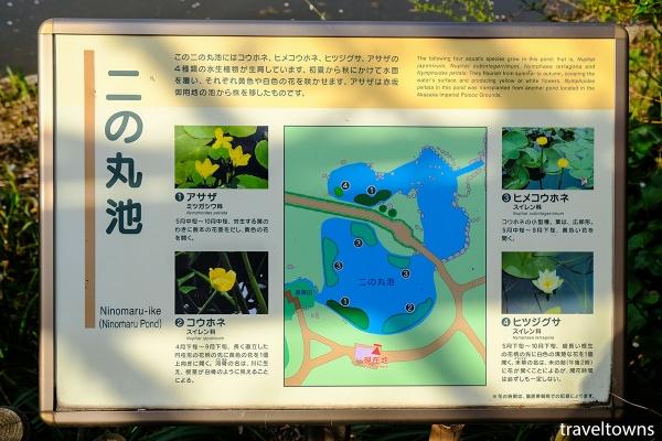 二の丸池の案内板にはアカザ、コウホネ、ヒメコウホネ、ヒツジグサなどの解説がある