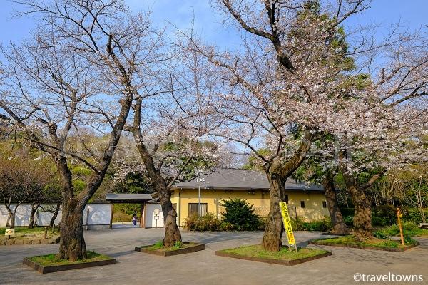 庭園の入口と和館