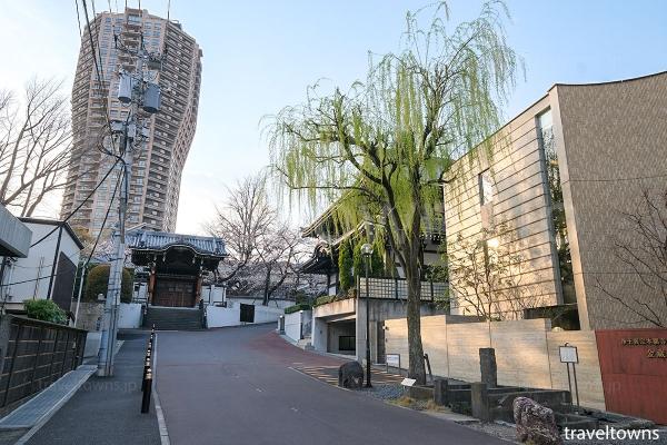 柳の木の脇にある「柳の井戸」と本堂への道
