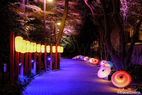 ライトアップされた和傘が並ぶ小道