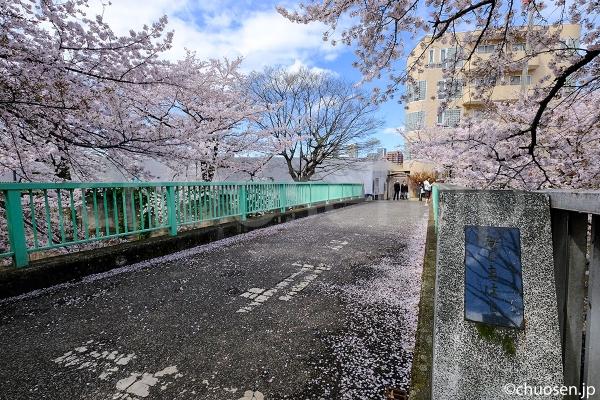 甘泉園公園の近くにかかる三島橋