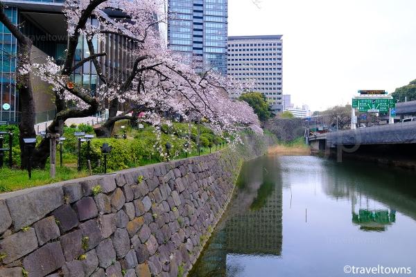 東京ガーデンテラス紀尾井町沿いにはお花見も楽しめる