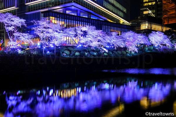 東京ガーデンテラス紀尾井町の桜ライトアップ