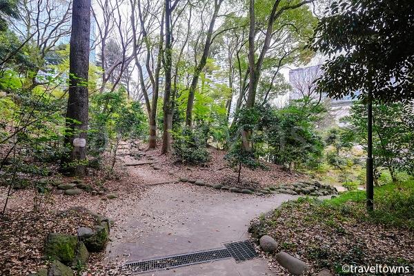 都会の中で緑豊かな清水谷を散歩できる