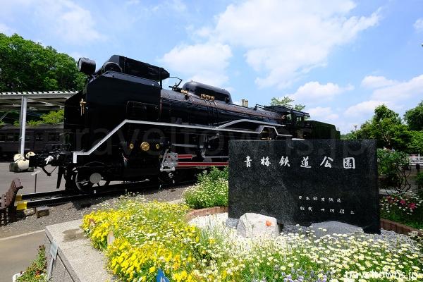入口を入ってすぐの場所に展示される1940(昭和15)年製造のD51形蒸気機関車