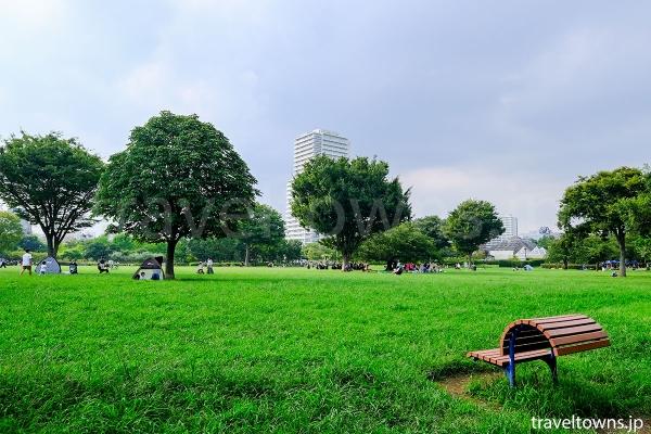 木場駅側のふれあい広場には芝生が広がる