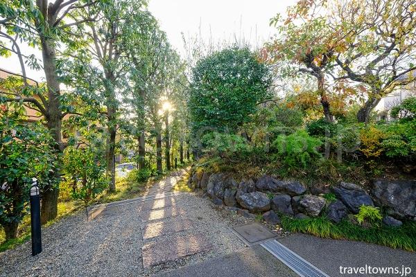 ちょっとした小道を入ると庭も散策できる