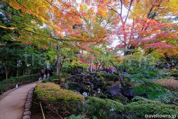 庭園の遊歩道を歩きながら紅葉狩りが楽しめる