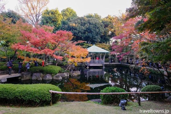 池の周囲は紅葉の人気スポット