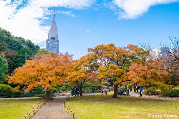 11月下旬から12月上旬にかけては園内の各所で紅葉も楽しめる