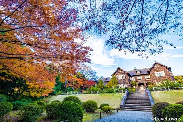11月下旬から12月上旬にかけての秋には紅葉も楽しめる