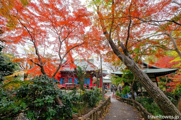 11月下旬から12月上旬にかけては紅葉も楽しめる