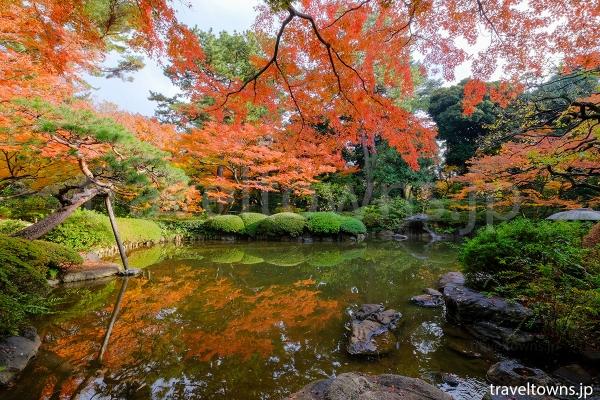 秋には日本庭園の紅葉も楽しめる