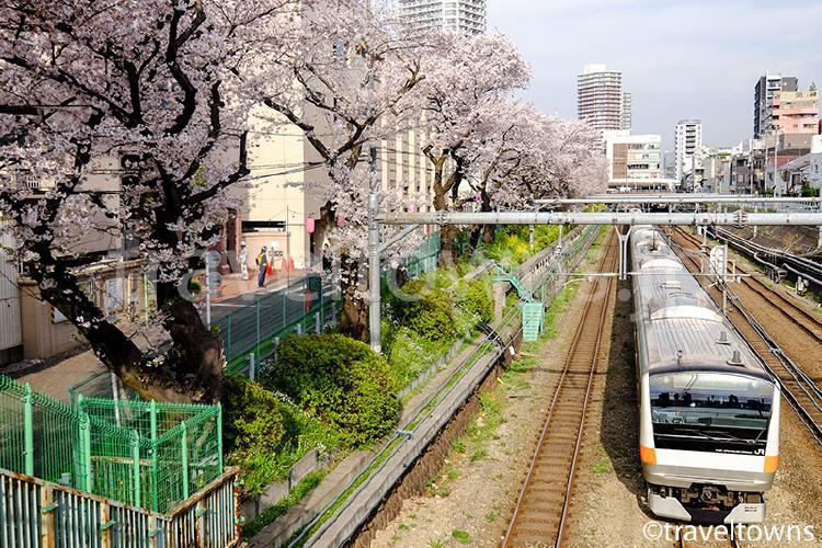 東中野・JR中央線沿いの桜